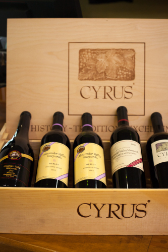 Cyrus and merlot at Alexander Valley Vineyards, Healdsburg, California