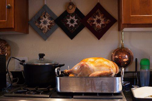 Resting turkey.