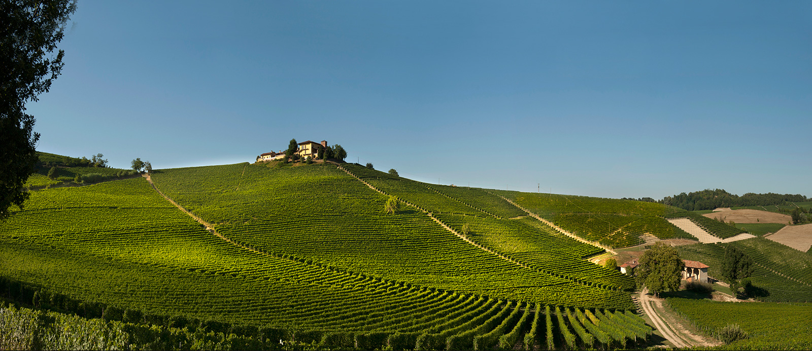 Elvio Cogno estate and Ravera cru, Barolo.