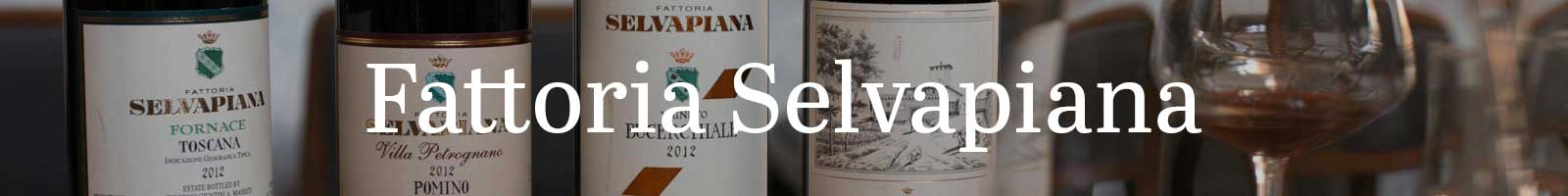 Essential Winemakers of Italy: Fattoria Selvapiana