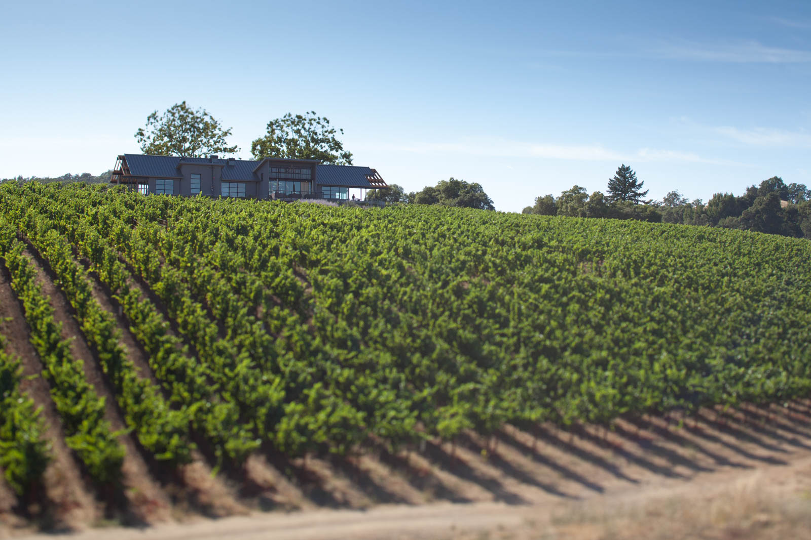 The MacRostie Winery & Tasting Room sits perched on a hill in Thale's Vineyard. ©Kevin Day / Opening a Bottle