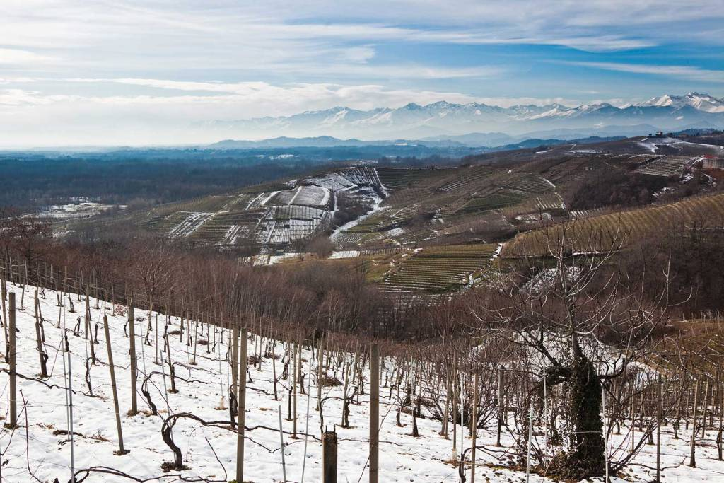 Gattinara snowed on vineyards, Piedmont, Italy. Italian Alps. Wine
