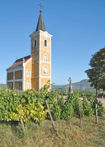 Church and vineyards, Szent György-hegy, Hegymagas, Hungary.