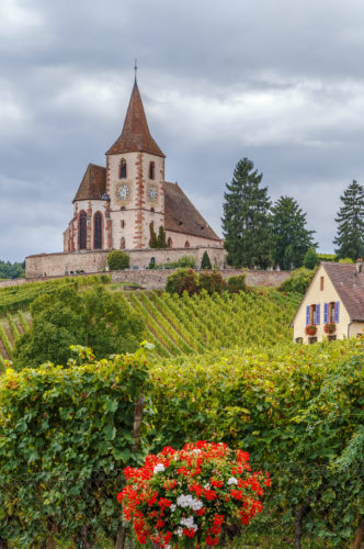 Achurch in Hunawihr, with surrounding vineyards. Alsace, France.