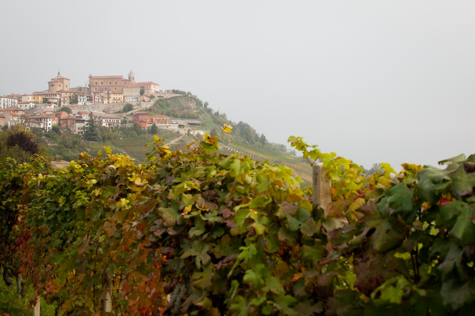 The hilltop village of La Morra, where winemaker Michele Reverdito is based. ©Kevin Day/Opening a Bottle
