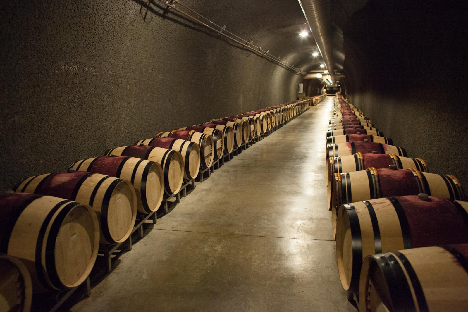 Cliff Lede Vineyards cave tour