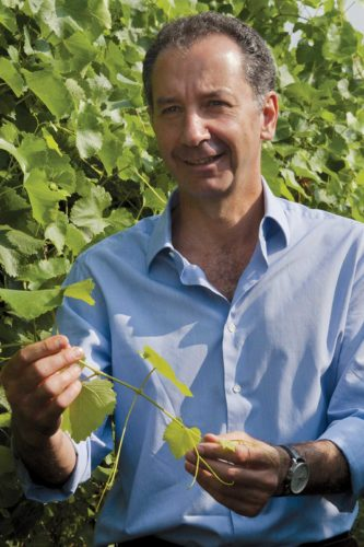 Winemaker Alberto Medici. ©Medici Ermete