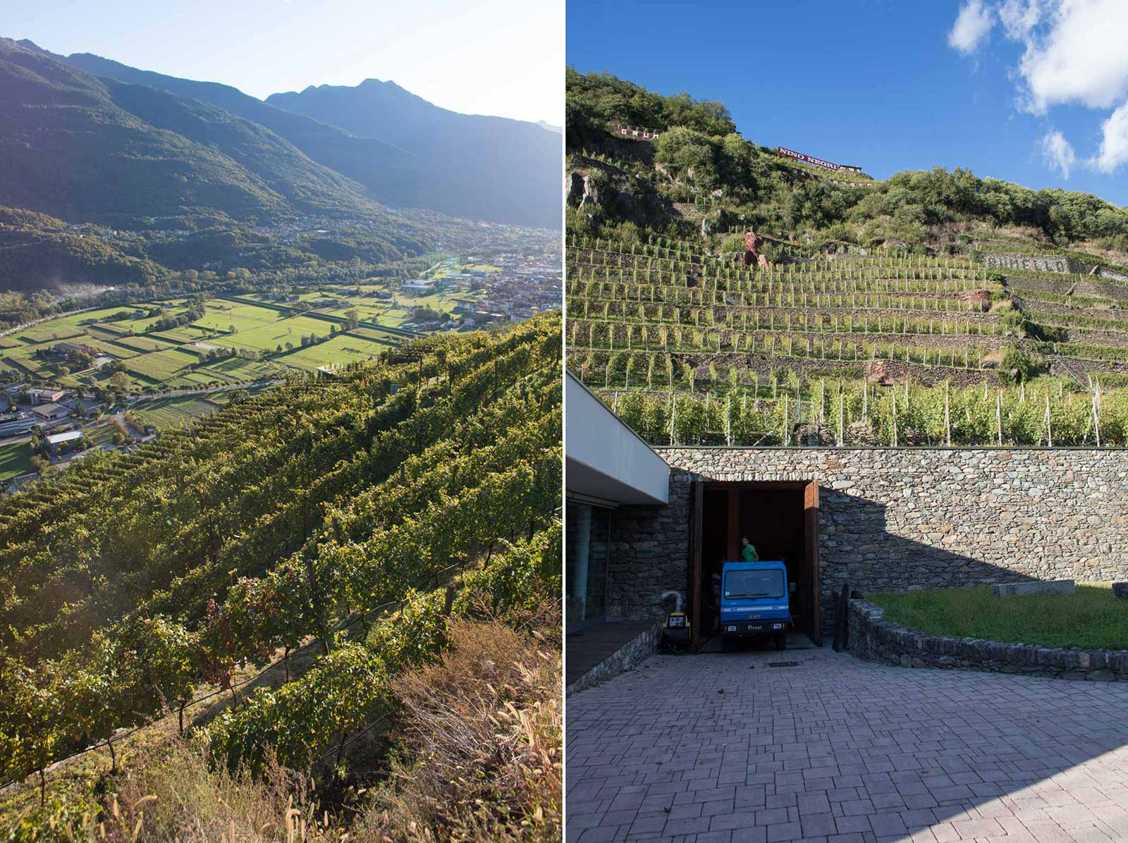 Multiple views of the Rocca de Piro vineyard and the ARPEPE winery. ©Kevin Day/Opening a Bottle
