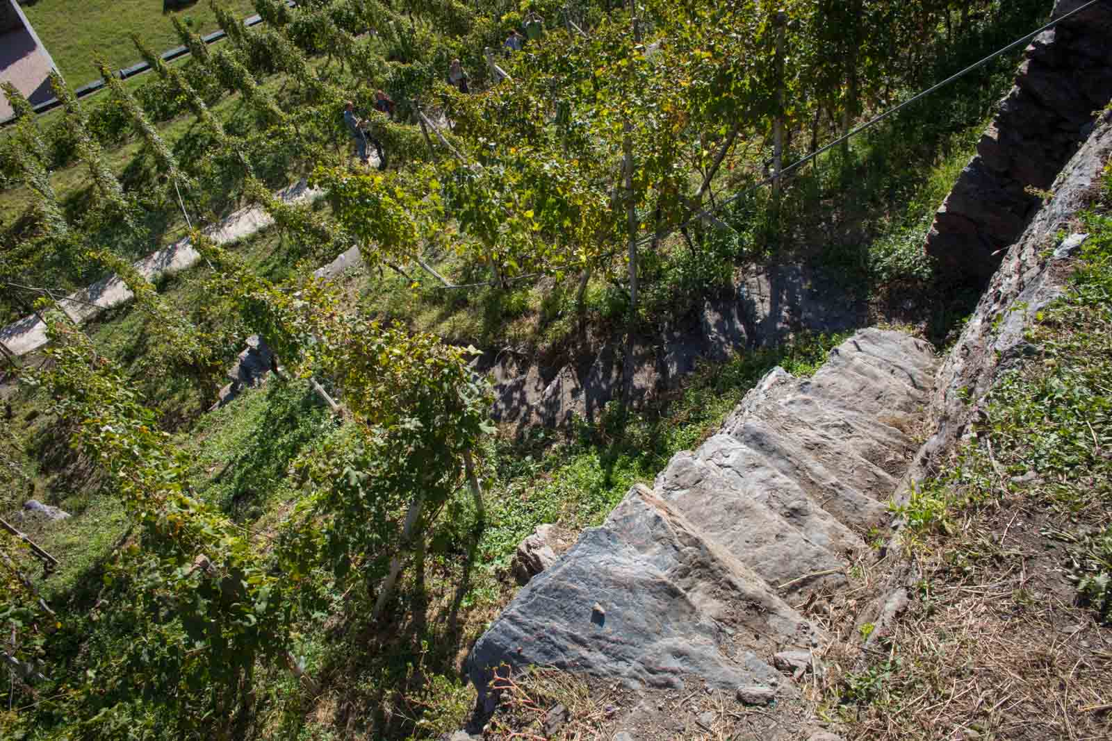A typical vineyard in Valtellina might inspire thoughts of M.C. Escher. ©Kevin Day/Opening a Bottle