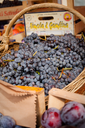 Dolcetto grapes for sale in Alba, Italy. ©Kevin Day/Opening a Bottle