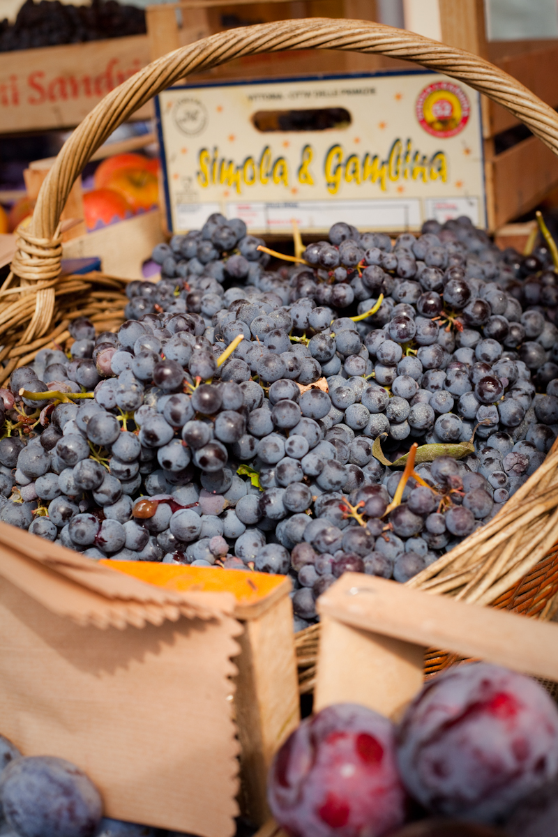 Dolcetto grapes for sale in Alba, Italy.
