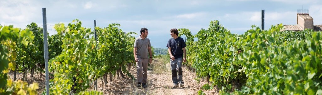 Brothers Joan and Josep d'Anguera walk through their vineyard in Montsant DO, Spain. / ©Cellars Joan d'Anguera