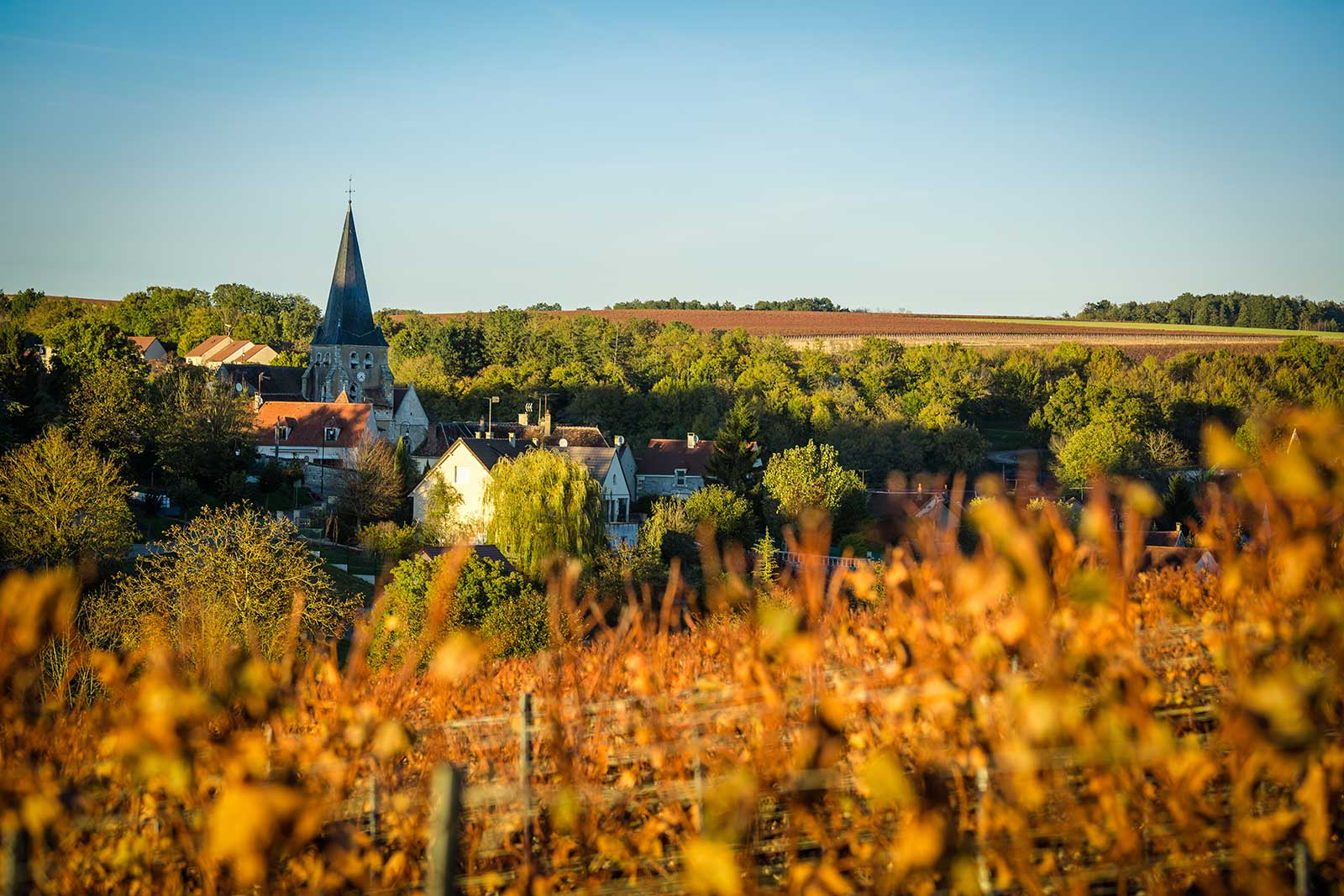 The village of Beine lies just west of the town of Chablis. ©BIVB – Bureau Interprofessionel des Vins de Bourgogne