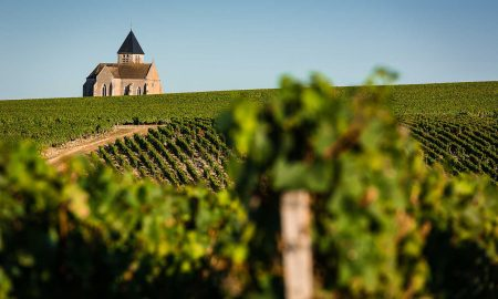 Notre Dame church rises above the Chablis vineyards of the village of Préhy, France. / ©BIVB – Bureau Interprofessionel des Vins de Bourgogne