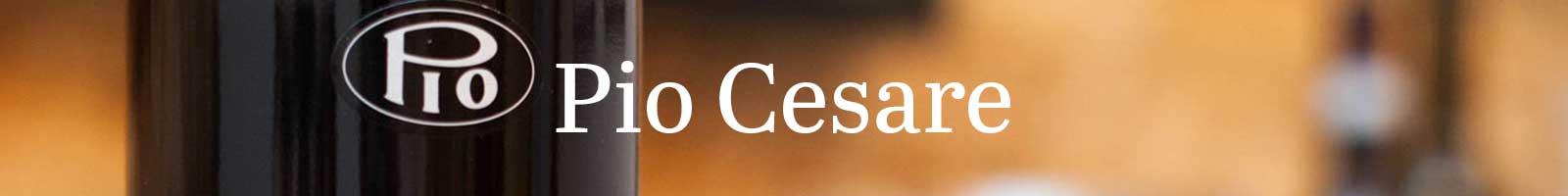 Essential Winemakers of Italy: Pio Cesare
