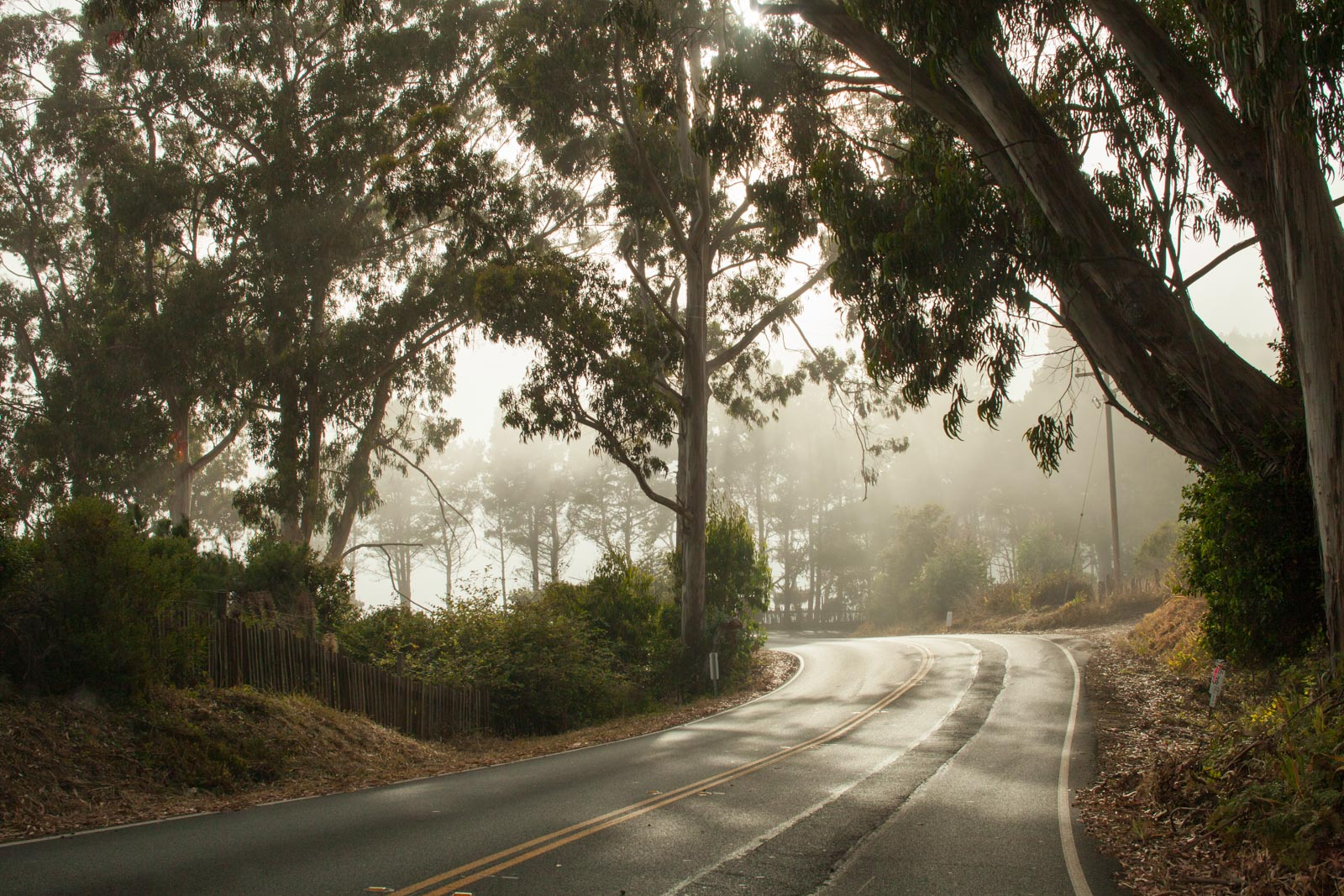 California Highway 1 in the fog near Fort Ross. ©Kevin Day/Opening a Bottle