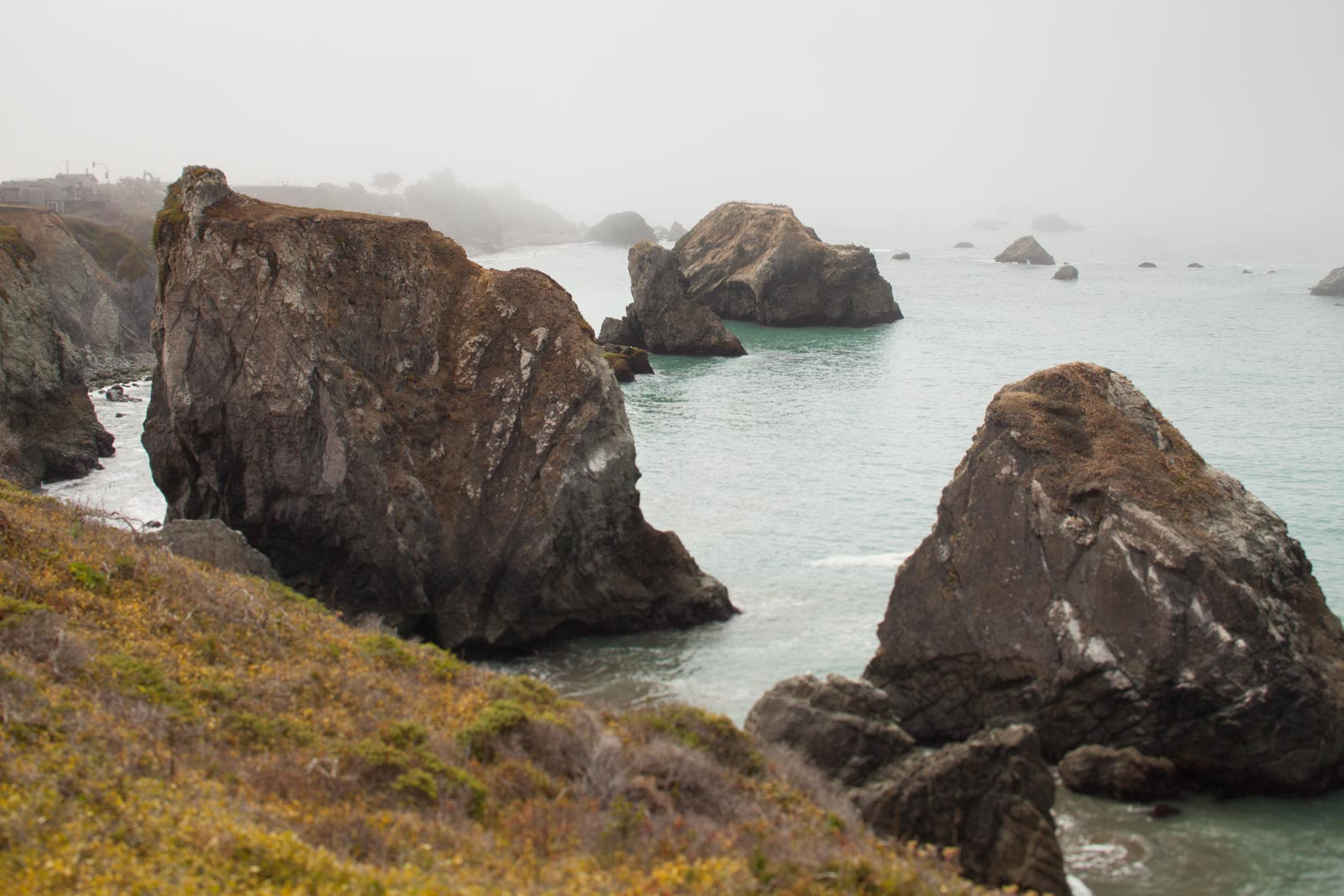 The view from Duncan's Cove, just south of the Russian River, Sonoma Coast, California. ©Kevin Day / Opening a Bottle