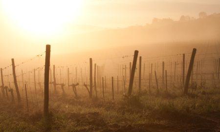 Spring time sunrise over Chianti, near Panzano, Italy and the Conca d'Oro