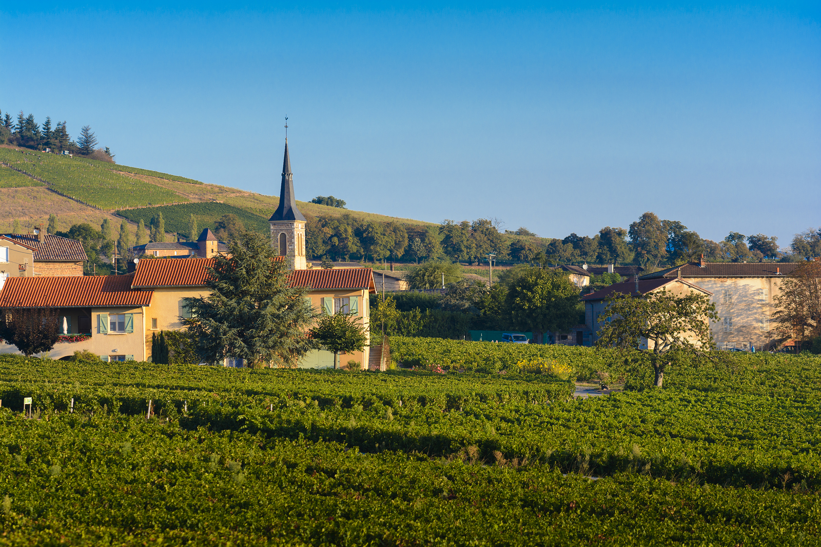 The village of Odenas in the Cru of Brouilly. Beaujolais, France.