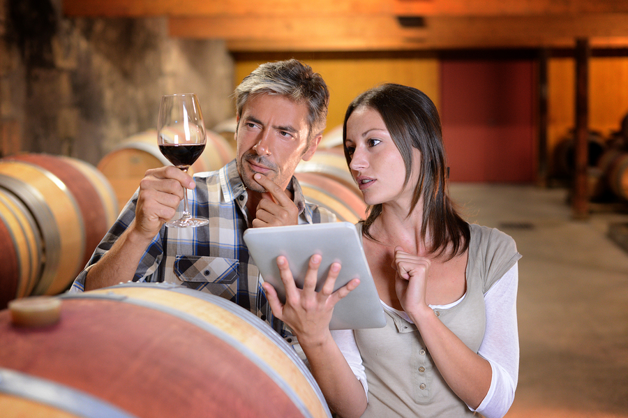 Winemakers in cellar using electronic tablet to control wine qua