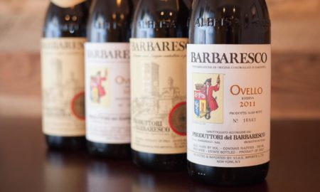 The wines of Produttori del Barbaresco