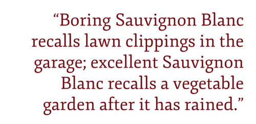 Boring Sauvignon Blanc recalls lawn clippings in the garage; excellent Sauvignon Blanc recalls a vegetable garden after it has rained.