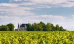 A chateau with vineyards in Margaux, Bordeaux, France