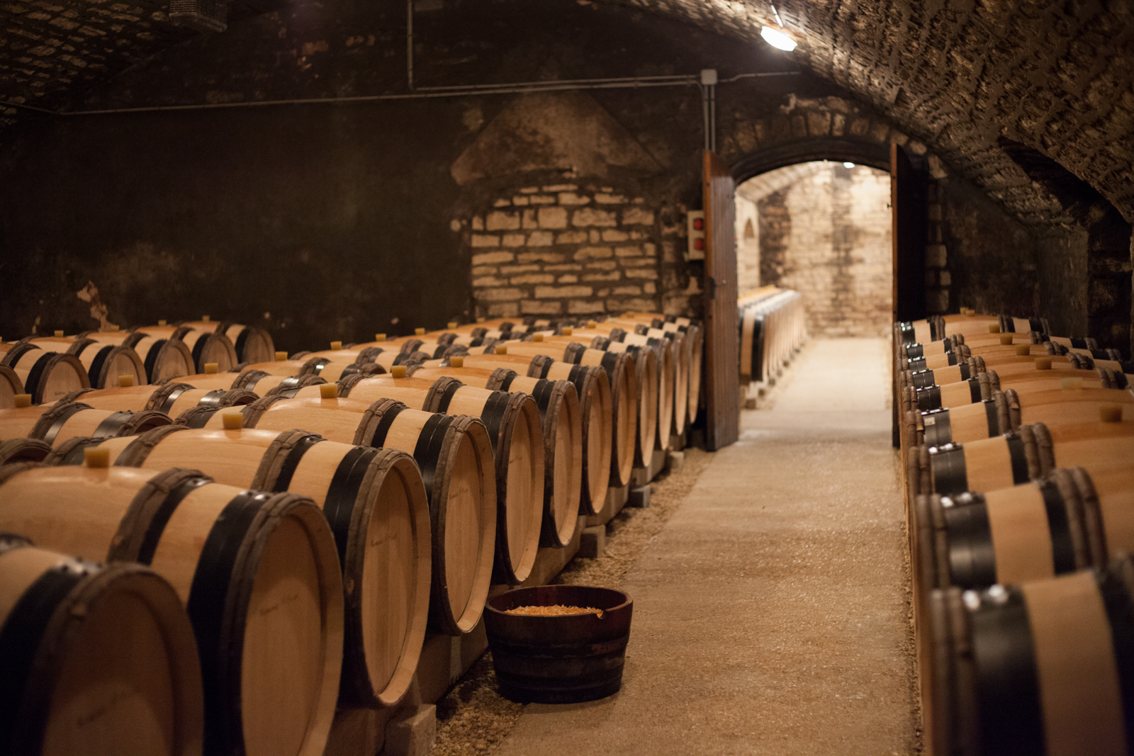 In the second of three rooms in the cellar at Domaine de la Romanée-Conti, the wines from Grand Cru Romanée-St-Vivant, Grands Echézeaux and Richebourgh rest. ©Kevin Day / Opening a Bottle
