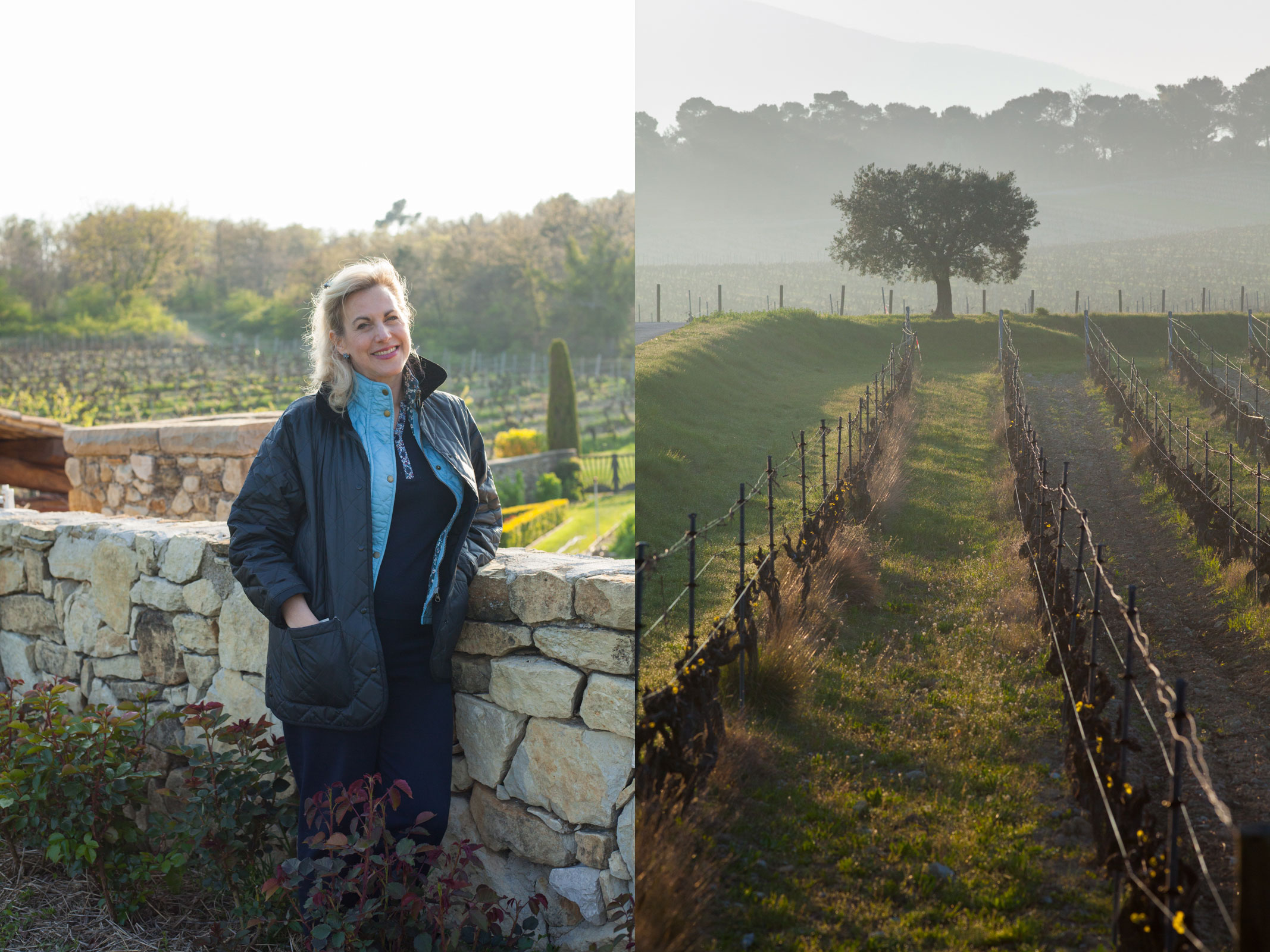 Nicole Rolet, the Principal of Chêne Bleu, and a lone olive tree in the Grenache vineyard. ©Kevin Day / Opening a Bottle