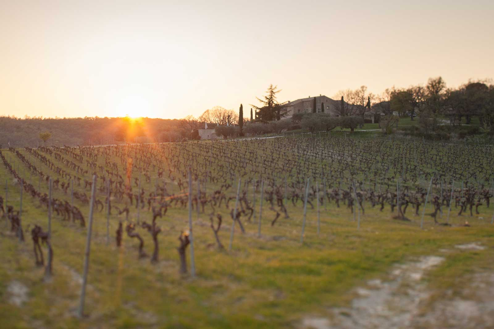 Sunset at Chêne Bleu, with La Verrière in the distance. ©Kevin Day / Opening a Bottle