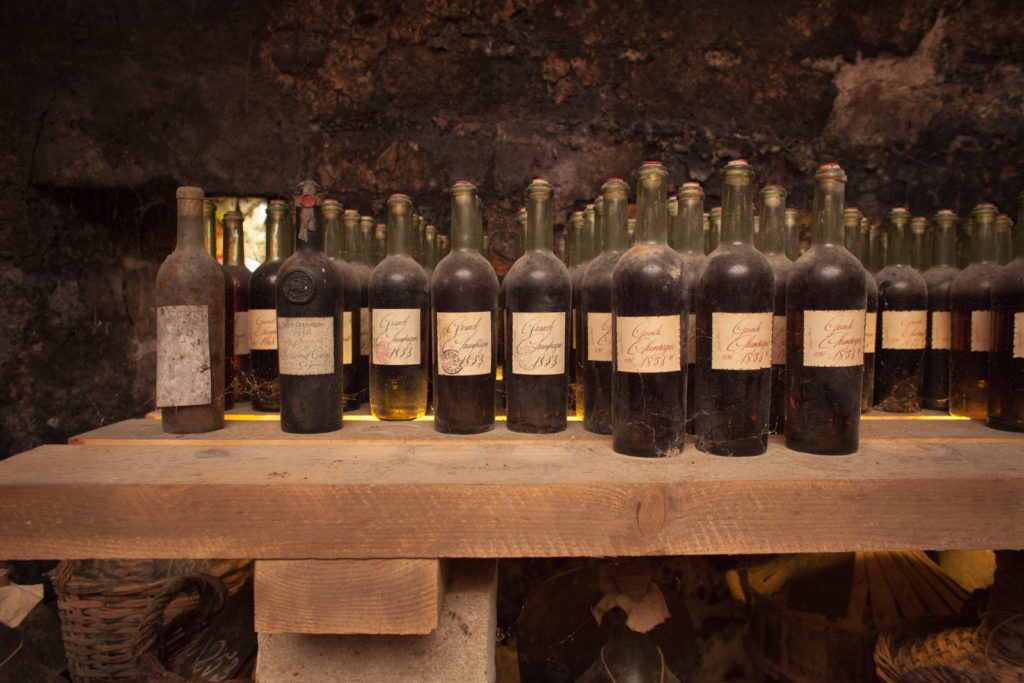 Bottles dating from the 1800s line the shelves at Cognac Lhérauds cellar. ©Kevin Day/Opening a Bottle