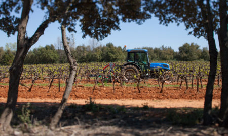 A tractor plows the vineyards at Château Gassier in the South of France, Côtes du Provence ©Kevin Day/Opening a Bottle