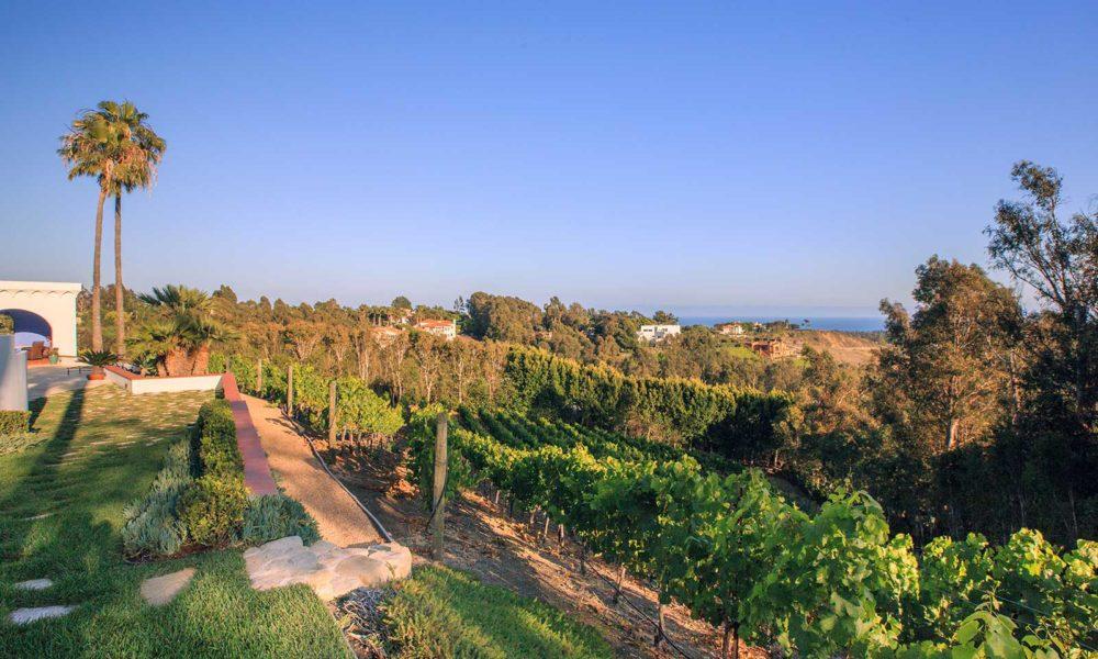 Dolin Estate winery, Malibu. ©Dolin Estate