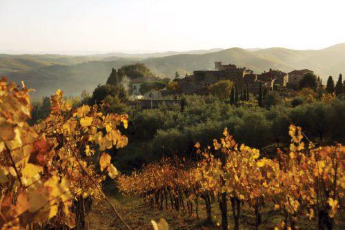 The Wines of Castello di Volpaia