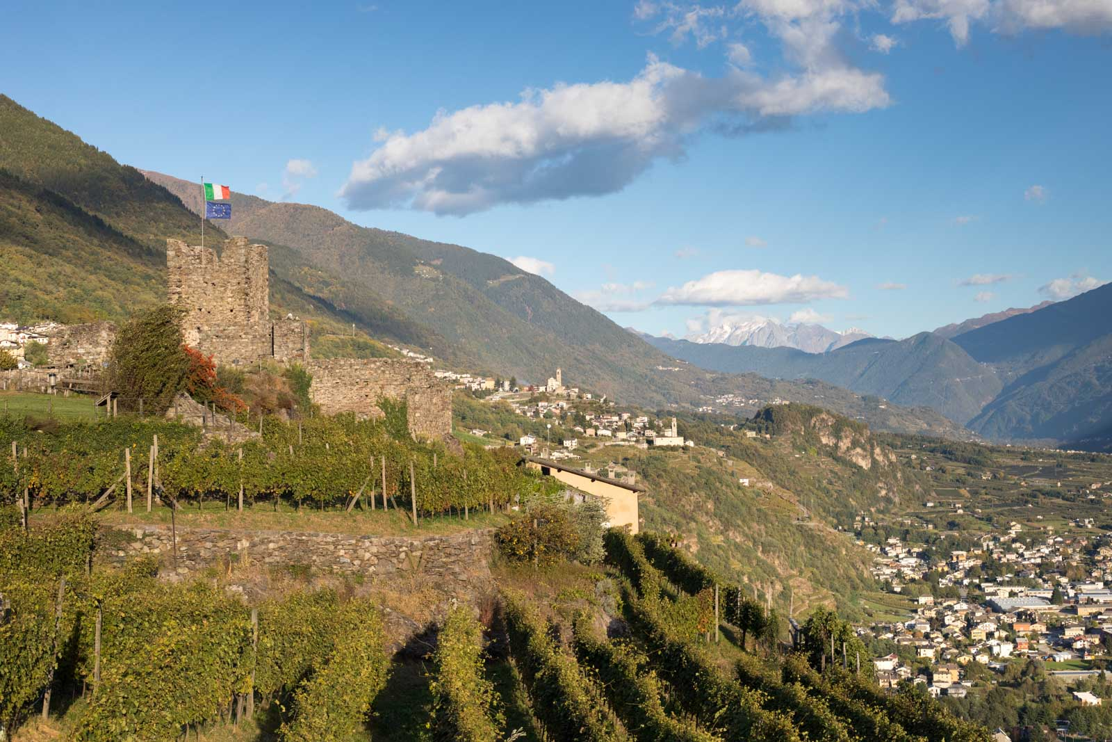 The Mysteries of ARPEPE's Beautiful Wines (Part 1)