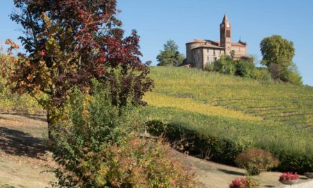 The Bricco Chiesa cru of Barolo, owned by the Oddero family. ©Kevin Day/Opening a Bottle