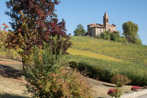 Oddero: Barolo With a Generational Perspective