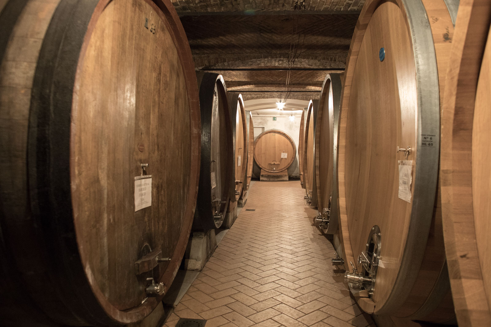 Large oak casks filled with Barolo and Barbaresco — some of them more than 40 years old — line the cellar at Oddero. ©Kevin Day/Opening a Bottle