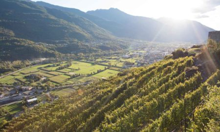 The vineyards of Valtellina. ©Kevin Day/Opening a Bottle