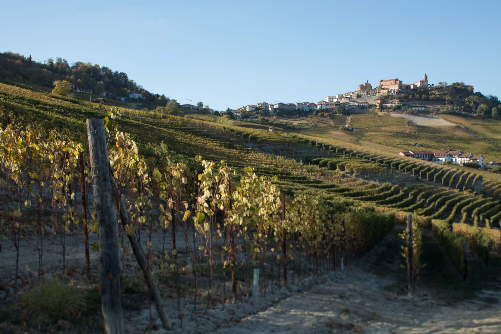The Boiolo cru of Barolo with the beautiful town of La Morra crowning the hill. ©Kevin Day/Opening a Bottle