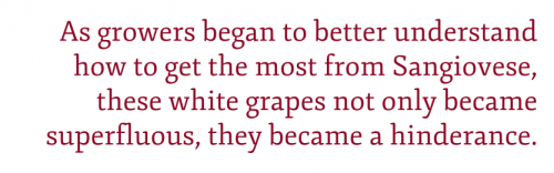 Pullquote: As growers began to better understand how to get the most from Sangiovese, these white grapes not only became superfluous, they became a hinderance.