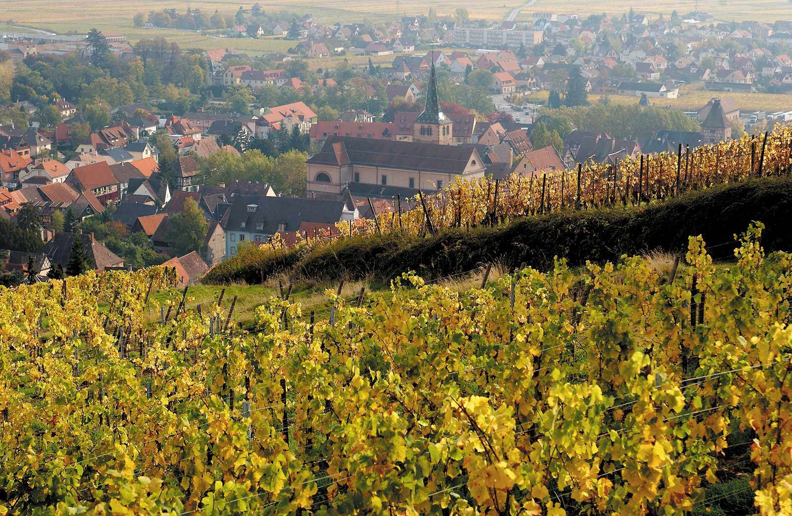 Turckheim ©Wines of Alsace