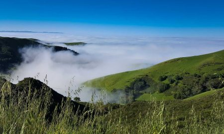 Fog rolls in from the Pacific Ocean near Stolo Family Vineyards, Cambria, California. ©Stolo Family Winery