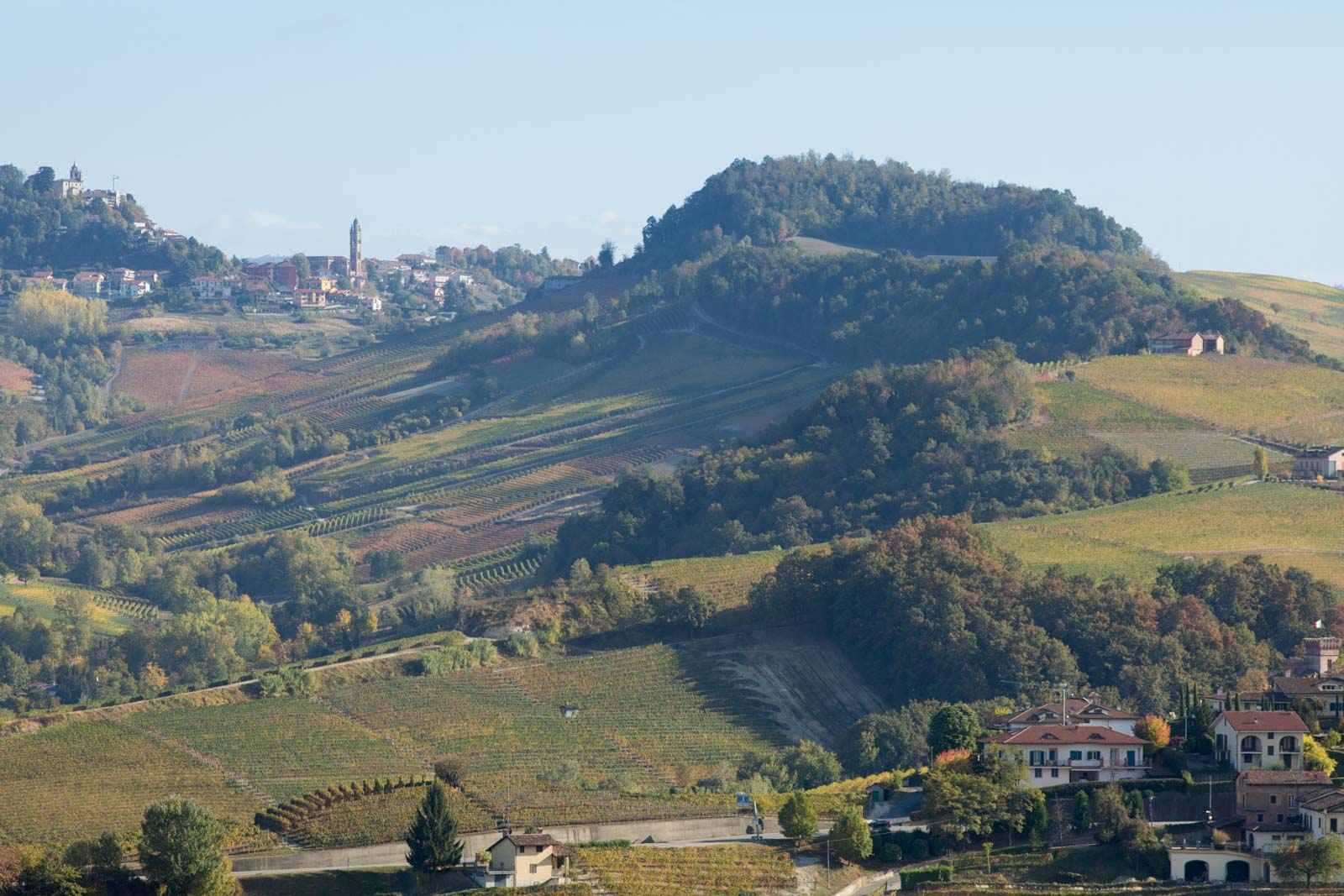 A view of Monforte d'Alba, tucked away above the Bussia vineyard, as seen from near La Morra. ©Kevin Day/Opening a Bottle