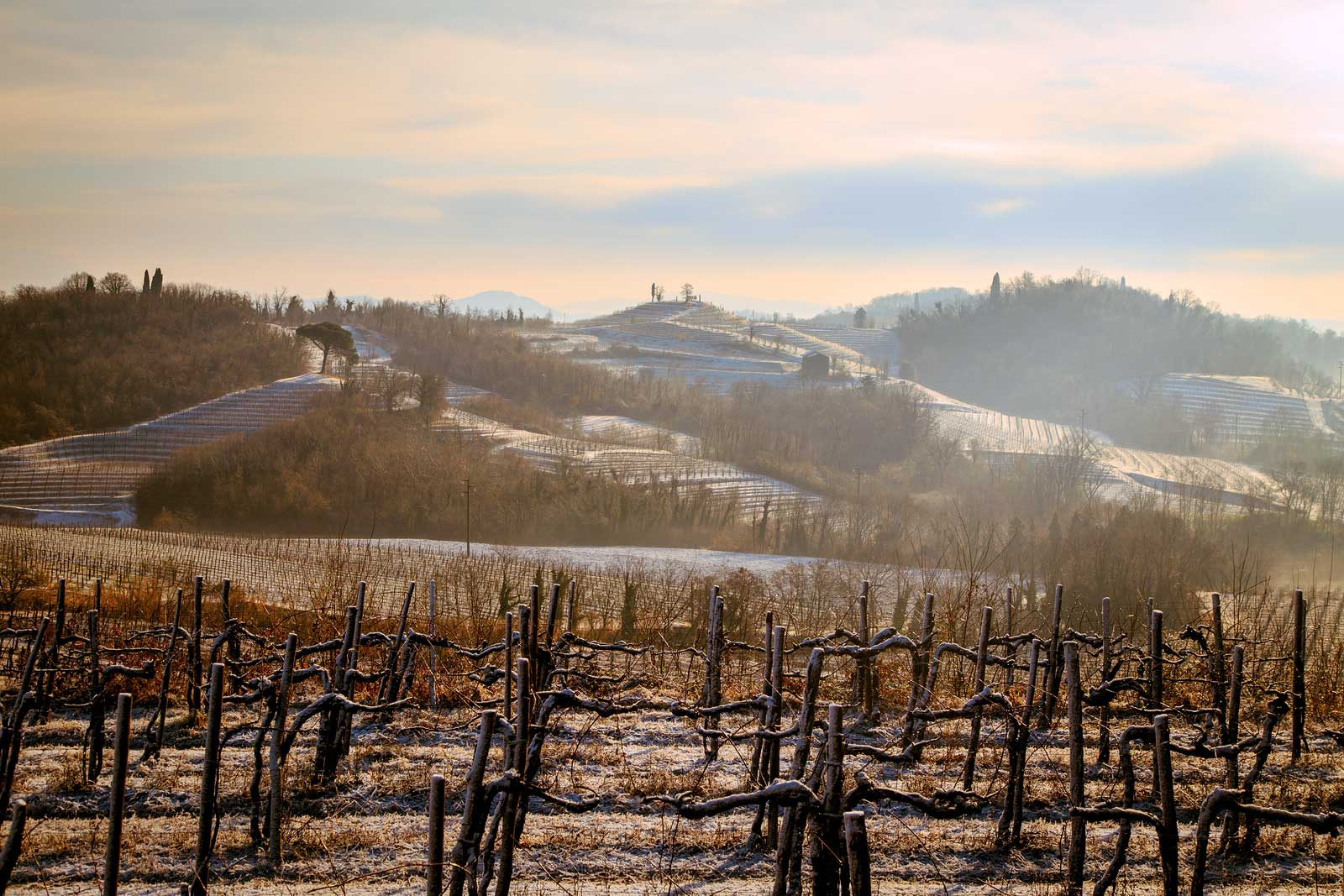 Winter in the Collio DOC offers its own version of magic.