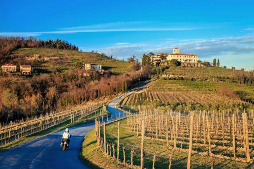 5 Ways to Host a Friuli Wine Tasting