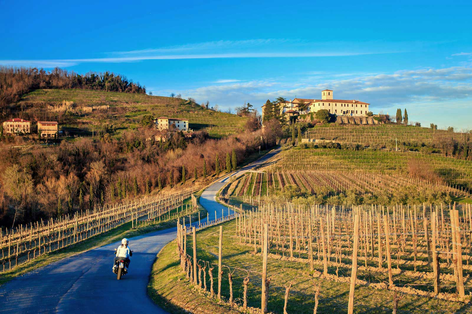 5 Ways to Host a Friuli Wine Tasting
