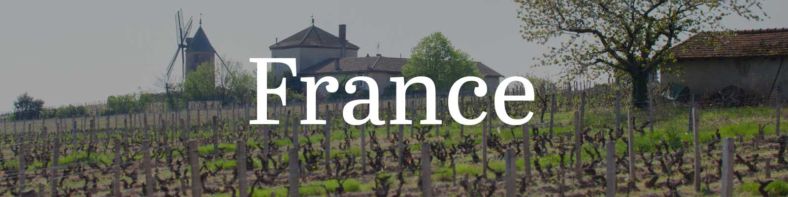 Essential Winemakers of France – Opening a Bottle
