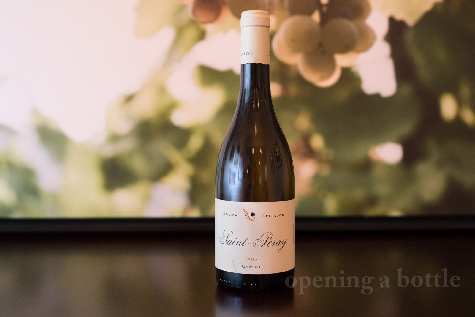 "2015 Cave Julien Cecilon ""Gemini"" Saint-Péray. ©Kevin Day/Opening a Bottle"