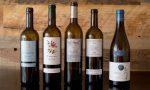 Bottles of Priorat DOQ wine